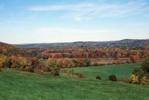 Herbst, Laub, Hang