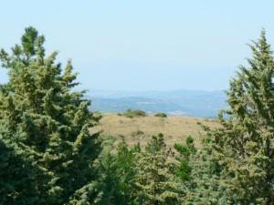 Italian, countryside, landscape