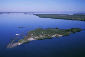 aerial, pelican, island, wilderness, refuge, image