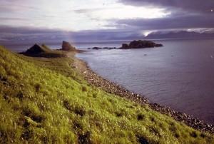 amagat, île, nature