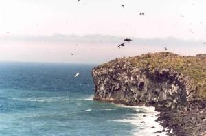 kenyon, dôme, basalte, colonnes, Bogoslof, île
