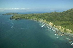 tropical, island, coastline, scenic, image