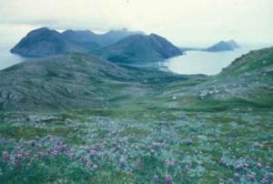 ushagat, island, barren, islands