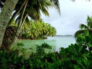 scénique, lagune, paysage