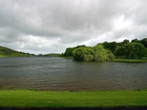 akes, lough, clouds, trees, Ireland