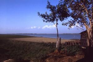 cuerpo, agua, país, Bangladesh