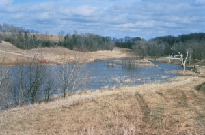 dry, grass, lake
