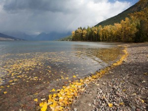 fall, day, lake, McDonald