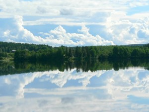 forest, sky, mirror, lake