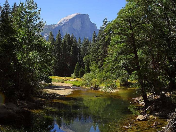 dôme, Sentinal, pont, Merced, rivière, Yosemite, parc
