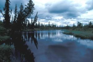kanuti, lake, scenics
