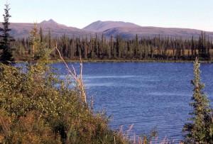 lac, jonction, Selawik, rivière, Ingruksuk, rivière