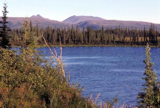 lake, junction, Selawik, river, Ingruksuk, river