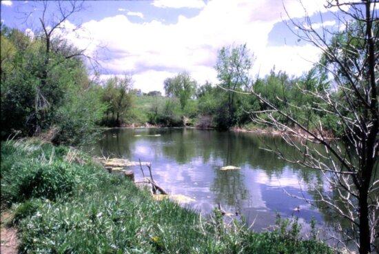 lake, two, ponds, wilderness, refuge