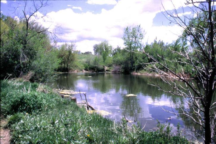 lac, deux, étangs, désert, refuge