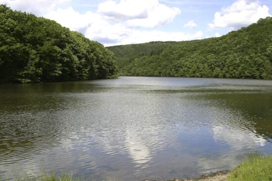 lake, nature, reserve