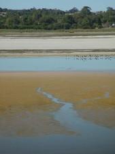 준 달 럽 호수