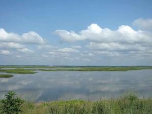 lake, field, flats