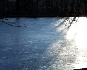 Jezioro, lód