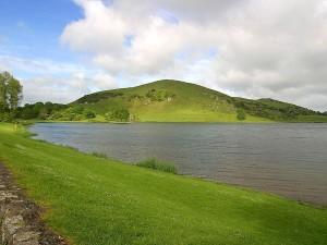 lakes, green, fields