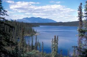 krajina, Bůh miluje Ugandu, jezero, Arctic, národní, volně žijící zvířata