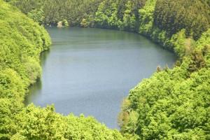 természet, tó