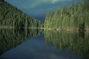 nice, reflections, lake