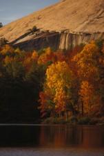 scénique, lac, chute, automne, feuillage, lac, montagne