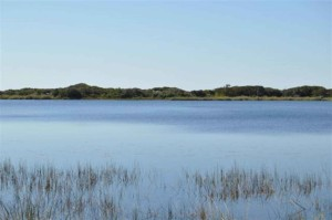 southward, shore, Campbell, lake