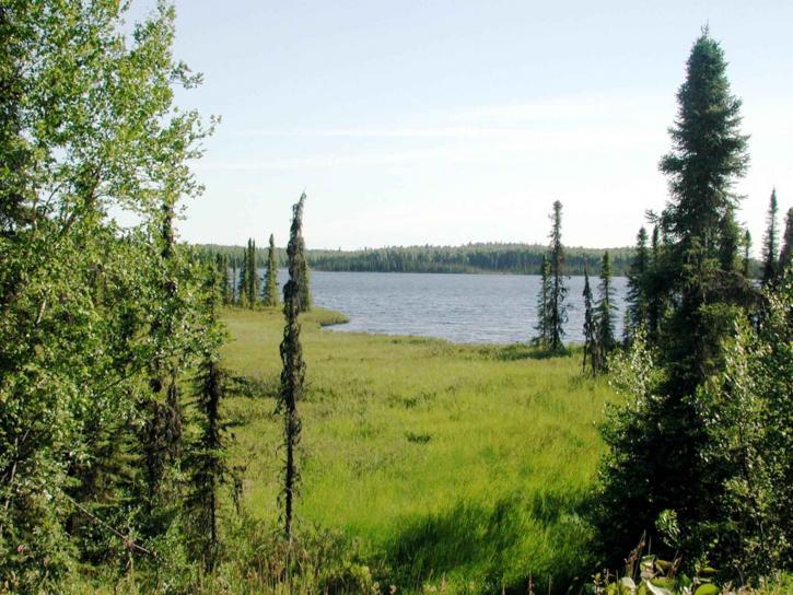 tanaina, lake