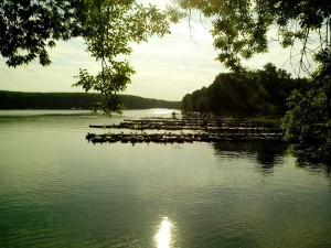 Lago Tikvara, città Backa Palanka, crepuscolo