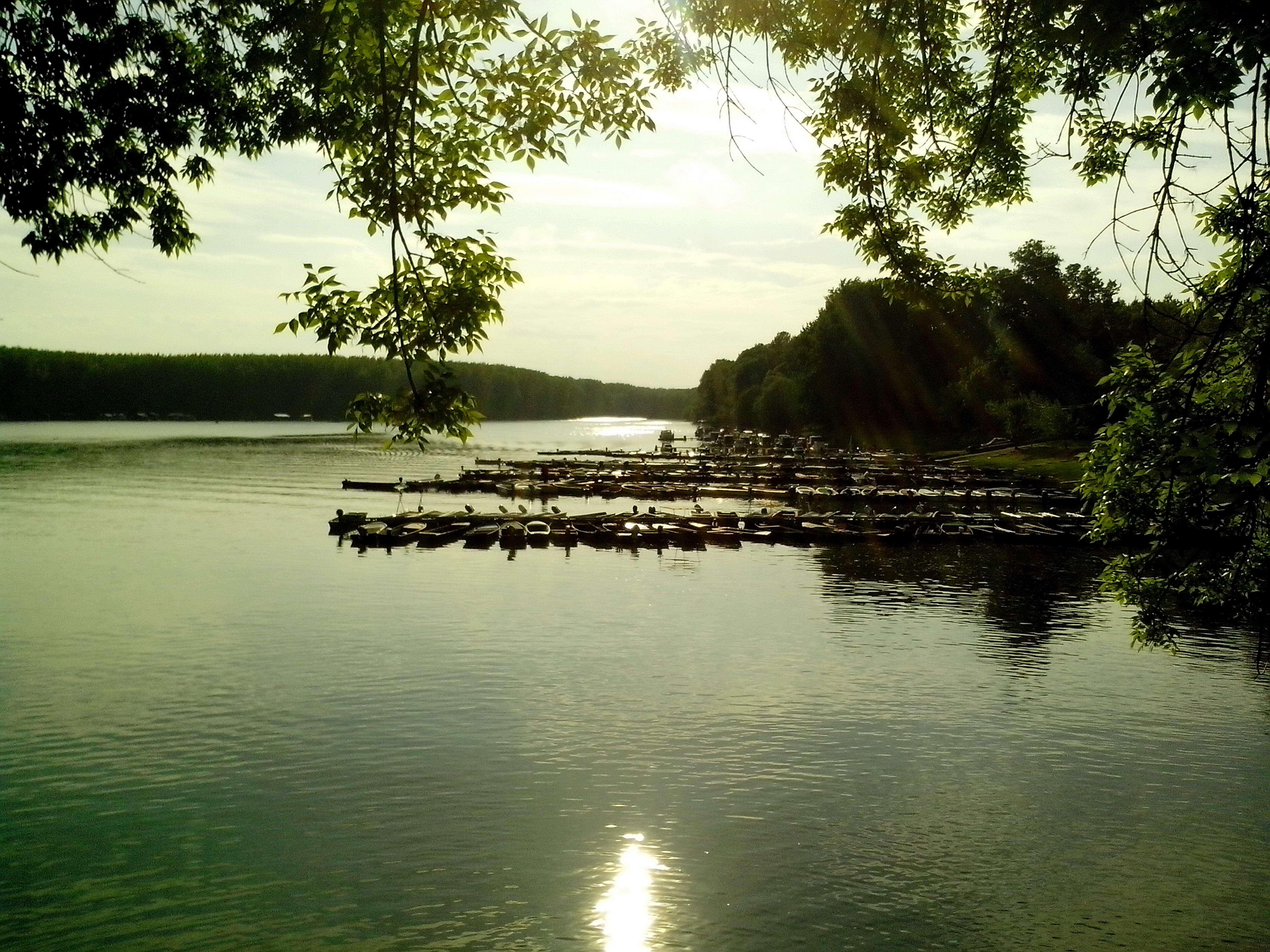 Free photograph; tikvara, Lake, Backa, Palanka, city, dusk
