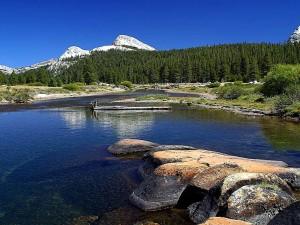 Tuolumne, prés, Yosemite, ruisseaux