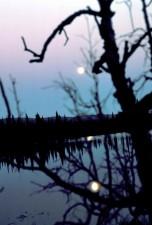 moon, dawn, reflection, lake, scenic