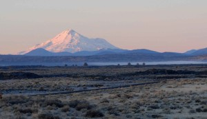 veld, alsem, mount, Shasta