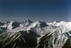 montagne, plage, Arctique, national, faune