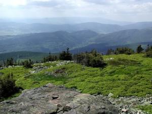 sommet de la montagne, l'herbe verte hillsm, montagne brumeuse