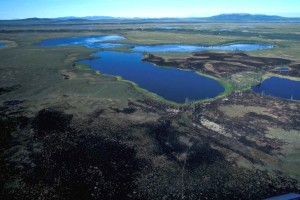 aerial, Selawik, national park, wetlands, burn, area