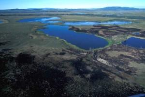 aérea, Selawik, parque nacional, humedales, quemadura, área