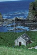 agattu, island, nơi ẩn náu, cabin, quần đảo Aleutian