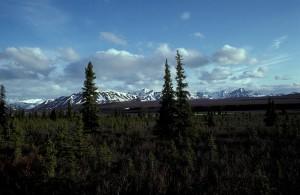 Alaska, rekkevidde, villmann, elven