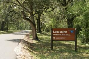 entrance, Lacassine, wilderness, refuge