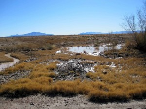 les inondations, les cendres, les prairies, désert, refuge