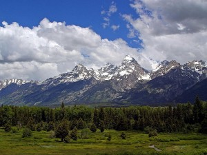 grand, Teton, national, reserve