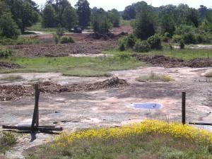granit, singkapan, habitat