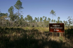 habitat, restoration, area, sign