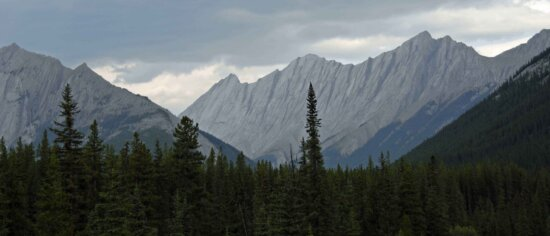 headwaters, Columbia, river, Canadian, rockies