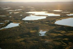 kodosin, lacs, Kanuti, désert, refuge