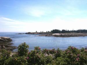 Maine, kamenita, obala, Acadia, Nacionalni park