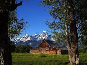 mormon, rangée, granges, grand, Teton, parc